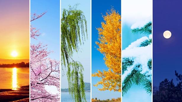 Czwartego dnia powstają pory roku, dni i lata ludzkości, gdy Bóg ponownie używa swojego autorytetu
