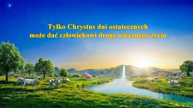 Tylko Chrystus dni ostatecznych może dać człowiekowi drogę wiecznego życia